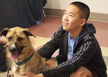 east-bay-spca-animal-camp