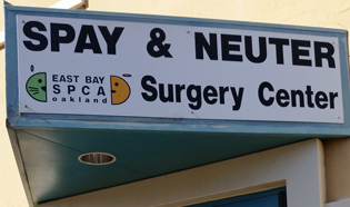 Spay Neuter East Bay SPCA
