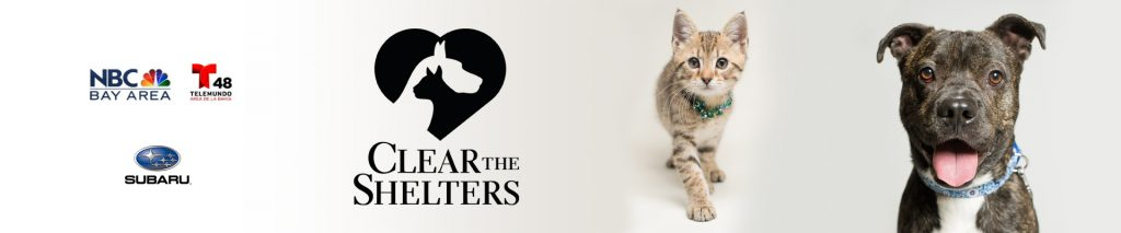 Clear-the-Shelters-East-Bay-SPCA